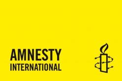 Cases_Online_Amnesty.indd